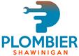 Plombier Shawinigan | Plombiers à Shawinigan, QC